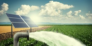Solar Water Pumps Manufactured by ABS Group